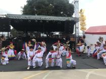 Festival Artistico Colegio San Via (42)