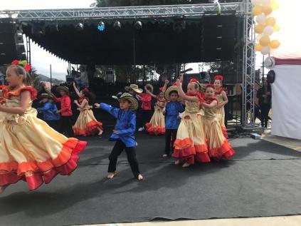 Festival Artistico Colegio San Via (66)