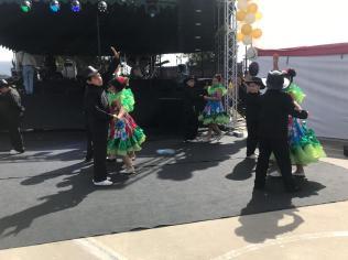 Festival Artistico Colegio San Via (68)