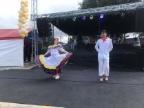 Festival Artistico Colegio San Via (70)