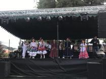Festival Artistico Colegio San Via (77)
