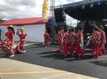 Festival Artistico Colegio San Via (84)