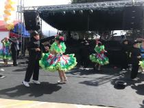 Festival Artistico Colegio San Via (86)