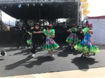 Festival Artistico Colegio San Via (89)