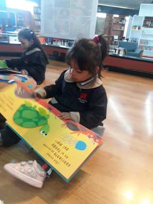 Visitas-a-la-Biblioteca-CSV-9