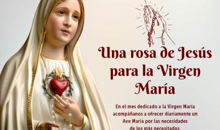 Una rosa de Jesús para la Virgen María