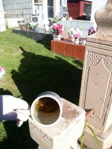 ação no cemitério (4)