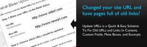 Velvet Blues Update URLs: Updates all urls and content links in your website.