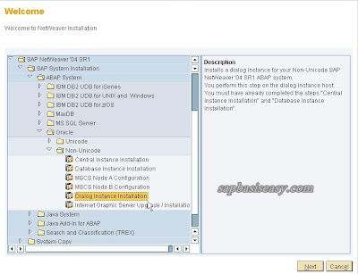How-to-install-SAP-Dialog-Instance
