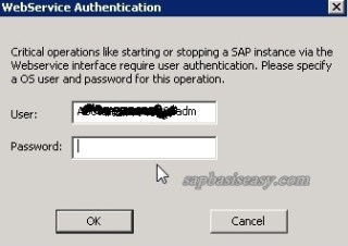 how to startup SAP on Windows