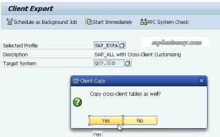 How to export SAP client