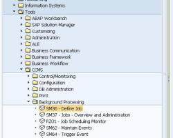 Defining SAP Background Job