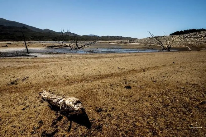 Image result for Cape's Drought