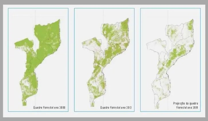 Moz Forestry cover Projection
