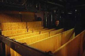 Italia . Essiccazione degli spaghetti in un pastificio di Salerno.De Agostini Picture Library/A. Vergani