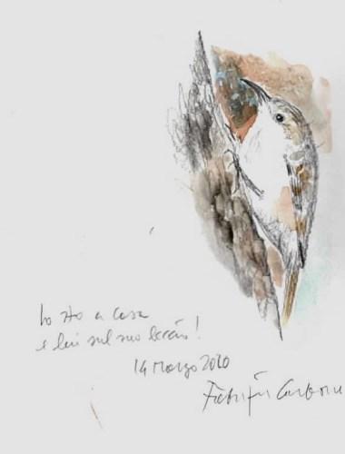 Il rampichino, un inedito di Fabrizio Carbone