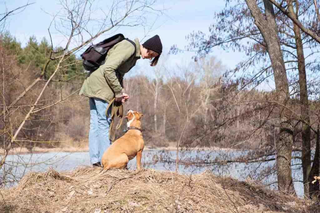 Una ragazza insieme al suo cane lungo il fiume