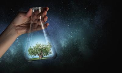 biodegradabile, chimica verde