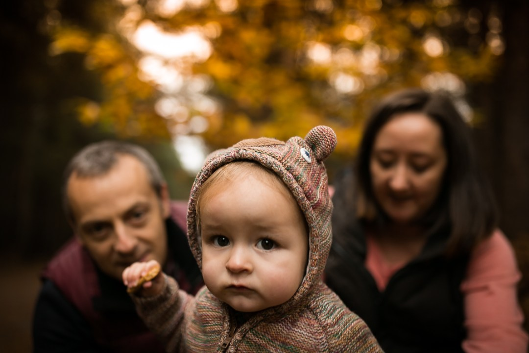 Baby Photography, Swinley Forest