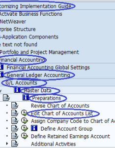 Chart of accounts types also sap training tutorials rh saponlinetutorials