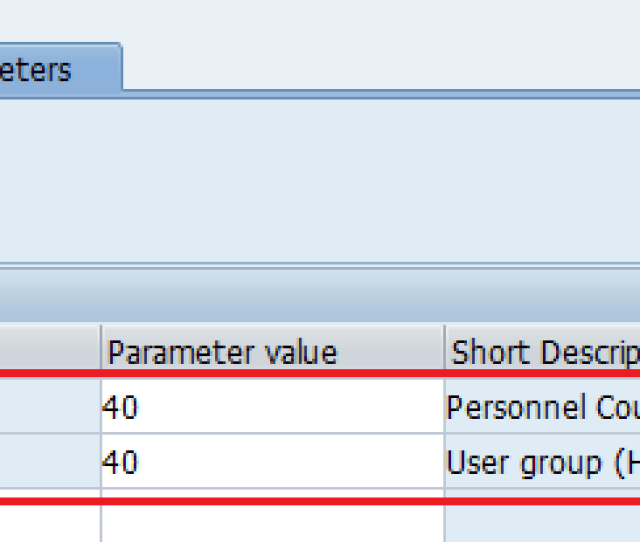 Maintain User Parameters Sap
