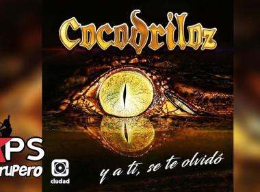 Cocodriloz - Y A Ti Se Te Olvidó (Letra y Video Oficial)