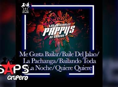 Letra Me Gusta Bailar / Baile de Jalao / La Pachanga / Bailando Toda La Noche / Quiere Quiere – Los Originales Pappy's de Cancún