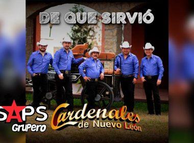 Letra De Qué Sirvió – Cardenales De Nuevo León