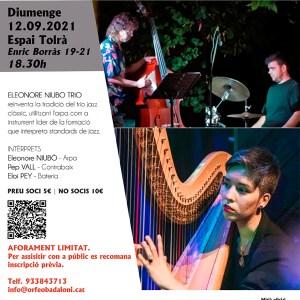 Concert Arpa Jazz