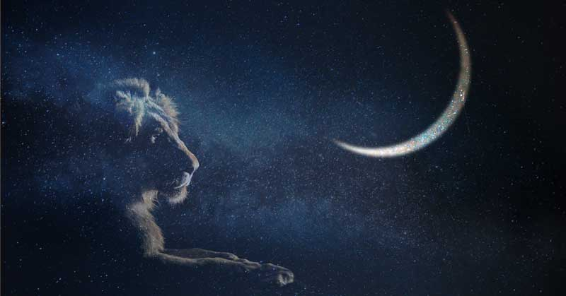 New Moon in Leo: Courage and Joy