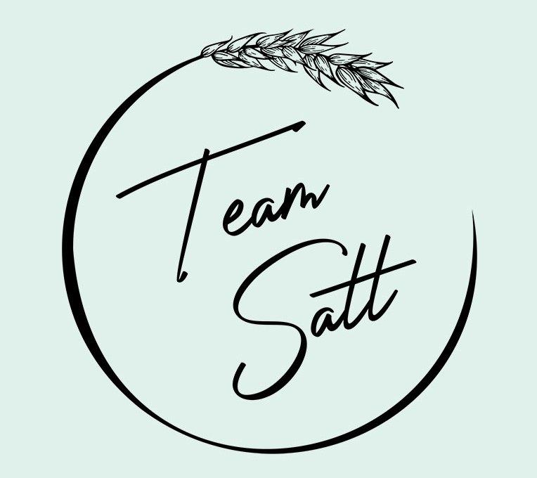 Logo Team Satt