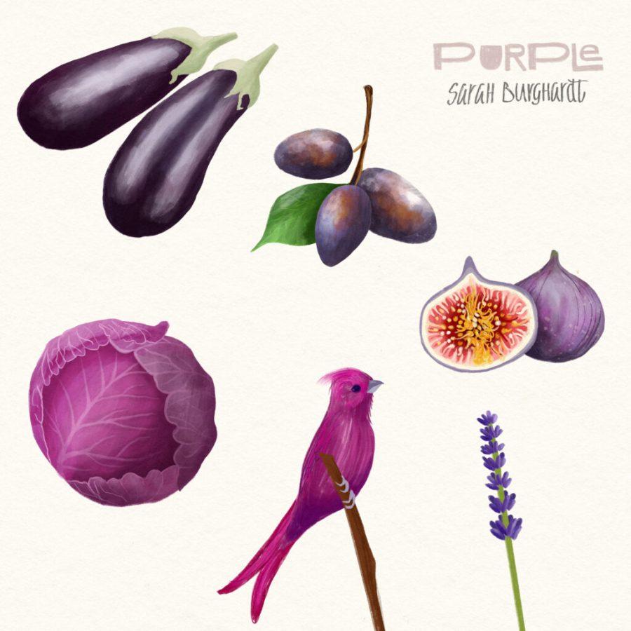 Food Illustration violet
