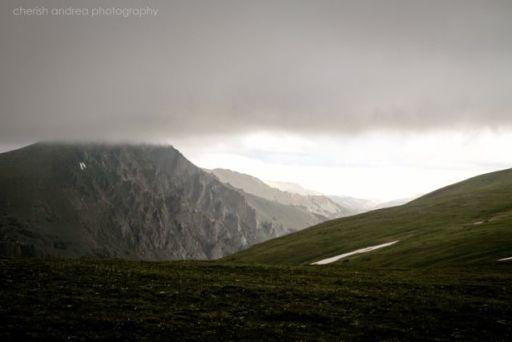 Mountain Mist Cherish