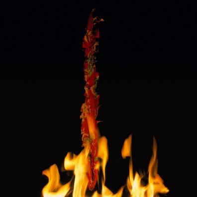 Fire, Wish 2, 2015