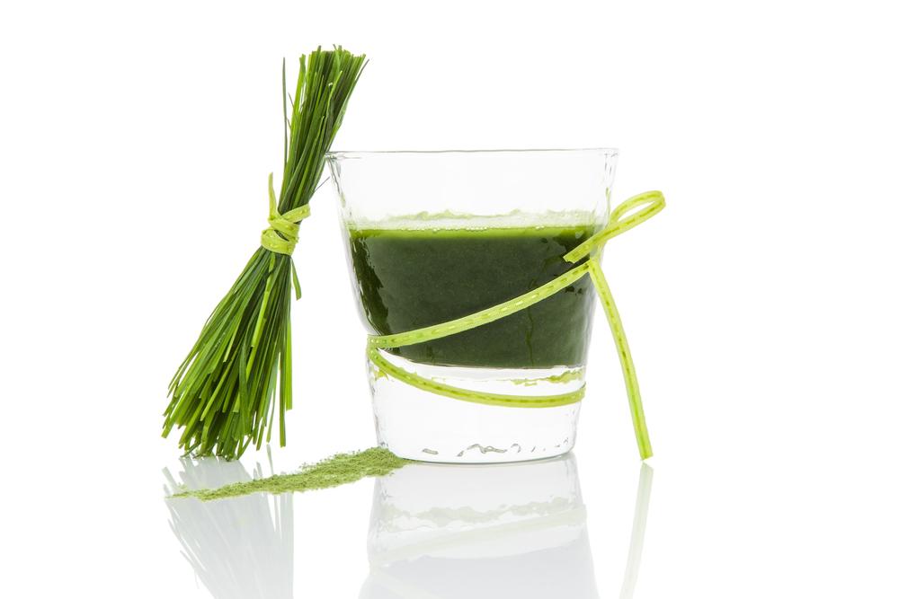 wheatgrassjuice1