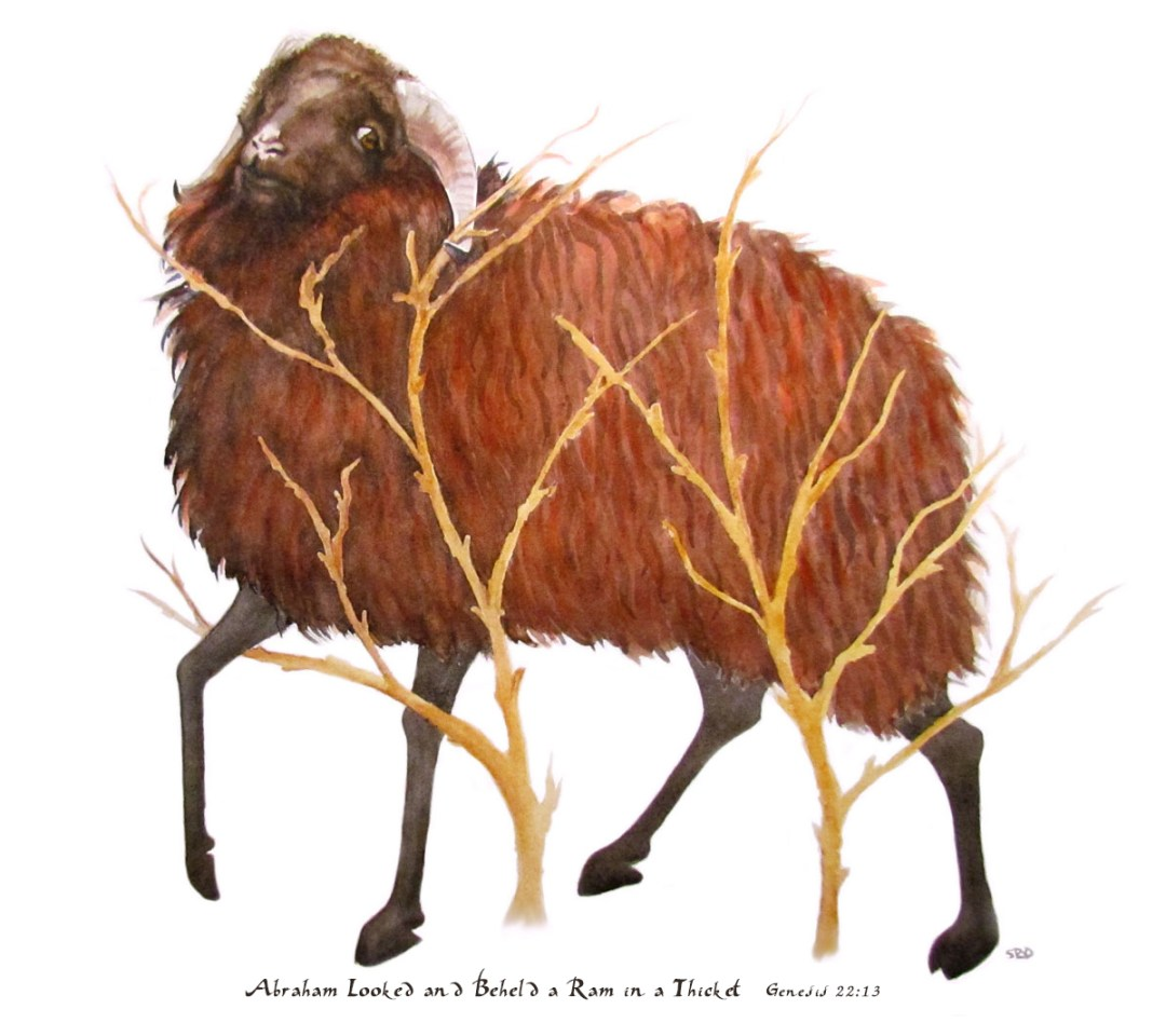 Abraham looked and beheld a ram in a thicket