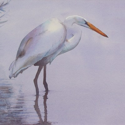 watercolor of standing egret