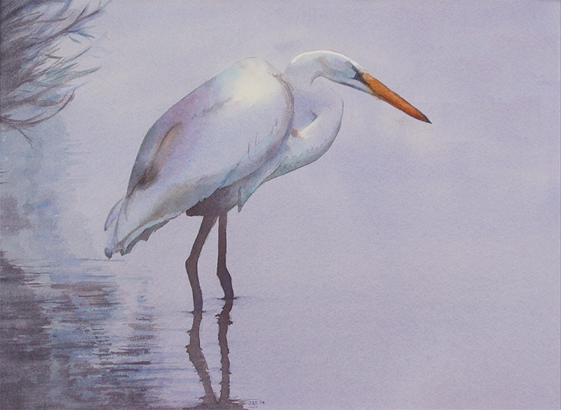 EGRET STANDING ON THE EDGE OF THE MARSH