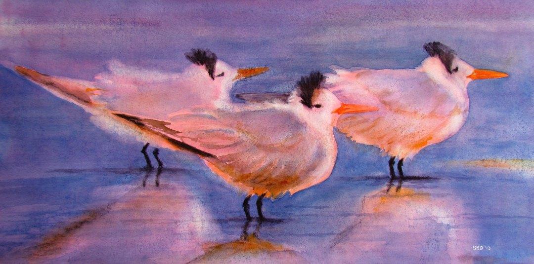 Three Royal Terns