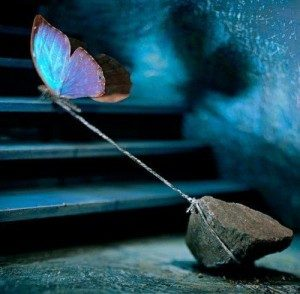 butterfly-flying-rock-up-stairs-300x294