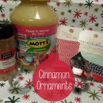 Cinnamon Ornaments - supplies