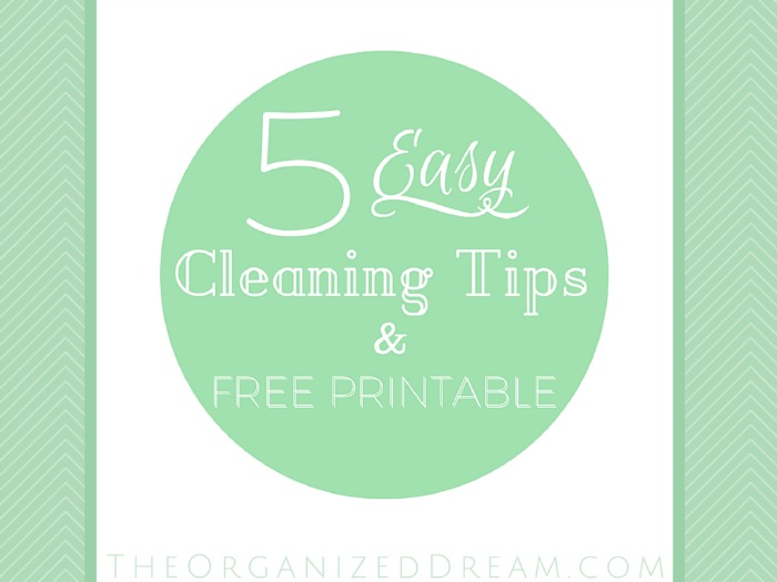 Organized Dream Easy Cleaning Tips | Sarah Celebrates #2usestuesday Feature