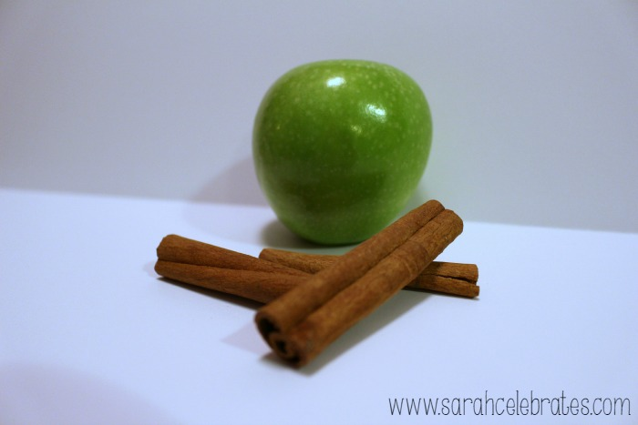 Well With Water - Apple Cinnamon Water - Apples and Cinnamon | Sarah Celebrates