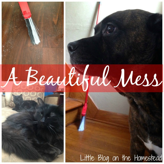 Beautiful Mess, Little Blog on the Homestead - A #2usestuesday Feature