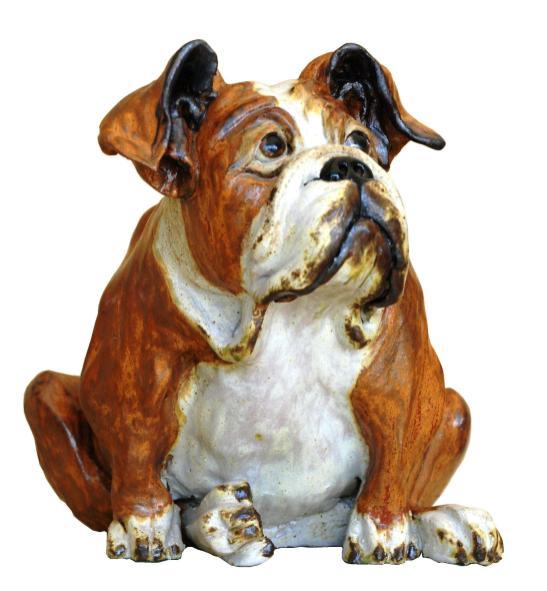 Bulldog w