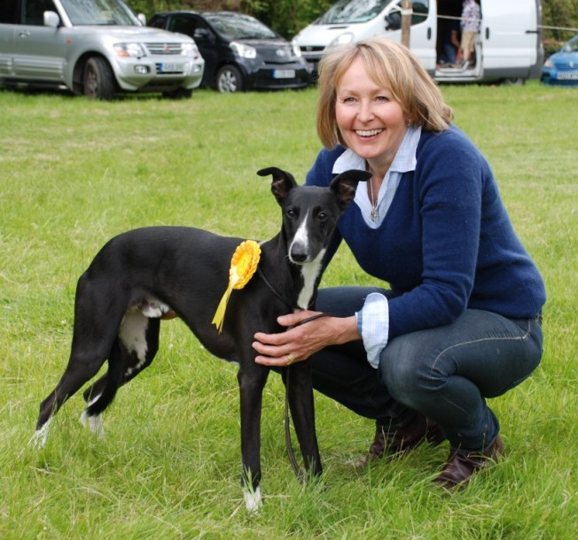 His first rosette at the South & West Wilts Hunt Lurcher and Terrier Show, Fonthill