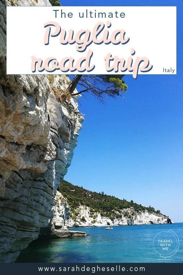 Pulgia road trip