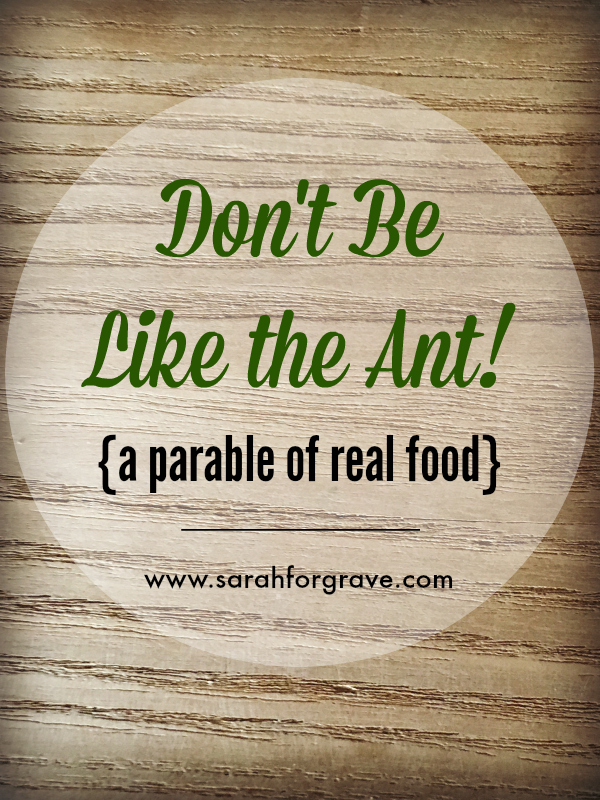 new_dont-be-like-the-ant
