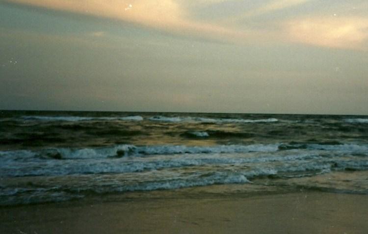 1995 beach essay