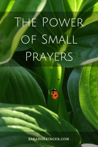 The Lord opens up the doorway to everyday peace with every small prayer.